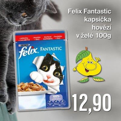 Felix Fantastic kapsička hovězí v želé 100 g